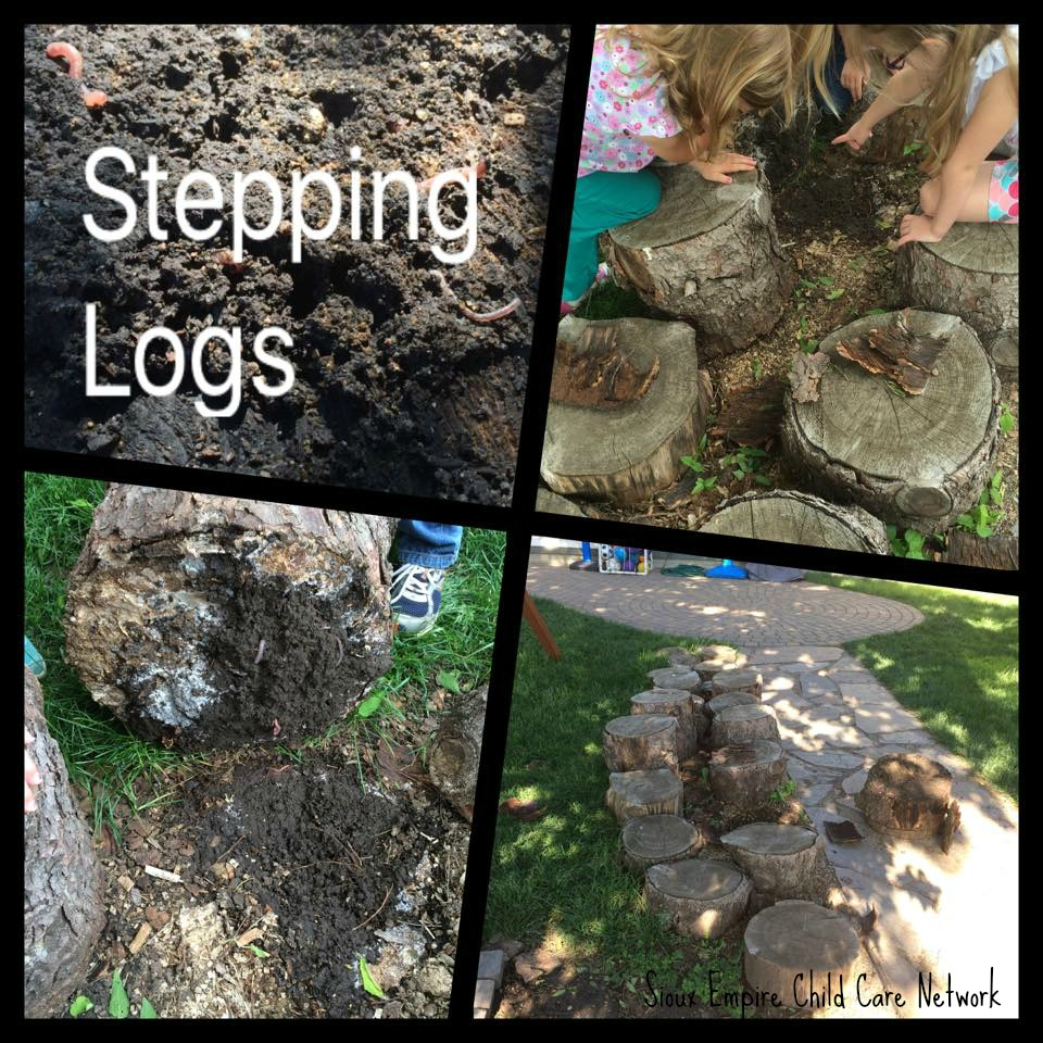 stepping logs sioux empire child care network